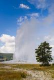 Yellowstone Park Narodowy, Wyoming, USA Zdjęcia Stock