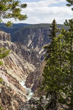 Grand Canyon of the Yellowstone River Stock Photos