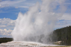 Yellowstone Park's Old Faithful Stock Photography