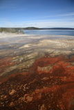 Yellowstone-Park - Westdaumen-Geysir-Bassin Stockfotos