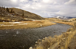Yellowstone Park Wyoming. Winter Snow Stock Image