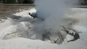 Yellowstone parka narodowego gejzeru dekatyzacja Fotografia Royalty Free