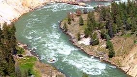 Yellowstone parka narodowego gwałtowni zbiory wideo