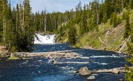 Yellowstone parka narodowego panorama Zdjęcia Royalty Free