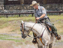 Yellowstone parkerar kommandosoldaten Royaltyfria Bilder