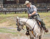 Yellowstone Parkowy leśniczy Obrazy Royalty Free