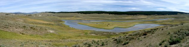 Yellowstone prairie. Large panorama of a big prairie at Yellowstone National Park, Utah, U.S.A stock images