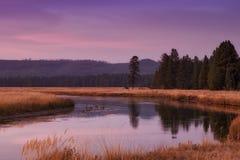Yellowstone przy półmrokiem Fotografia Royalty Free