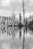 Yellowstone Reflections In IR Royalty Free Stock Image