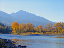 Yellowstone River. Showing off the fall colors of the cottonwood trees lining the banks with blue mountains of Paradise Valley, Montana in the background Stock Photos