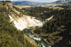 Yellowstone River. In Yellowstone National Park Royalty Free Stock Image