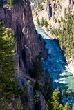 Yellowstone river1 royaltyfri bild