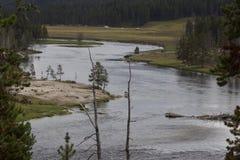 Yellowstone River Stockfotos