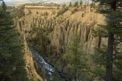 Yellowstone River in canyon at Devil's Den, Wyoming. Royalty Free Stock Photo