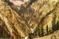 Yellowstone river crossing the canyon Royalty Free Stock Photo