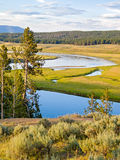 Yellowstone River in the Heyden Valley Stock Images