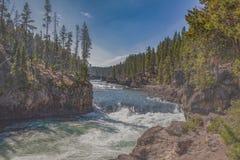 Yellowstone River forsar arkivfoto