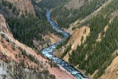 Yellowstone River and Grand Canyon Royalty Free Stock Images