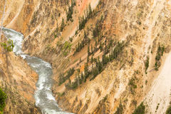 Yellowstone River Grand Canyon of Wyoming's National Park Royalty Free Stock Photography