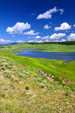 Yellowstone River in Hayden Valley Stock Image