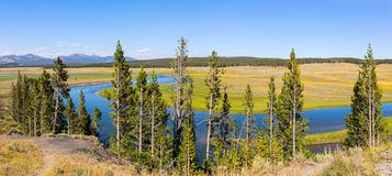 Yellowstone River at Hayden Valley royalty free stock image