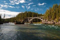 Yellowstone River i den Yellowstone nationalparken Royaltyfria Bilder