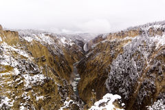 Yellowstone River im Schnee lizenzfreie stockfotografie