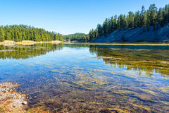 Yellowstone River landskap royaltyfri bild