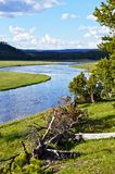 Yellowstone River Stock Image