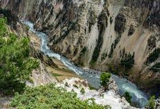 Yellowstone River och kanjon Royaltyfria Bilder