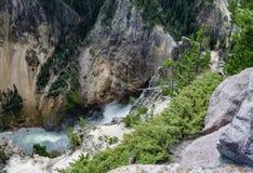 Yellowstone River och kanjon Arkivfoto