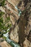 Yellowstone River och kanjon Fotografering för Bildbyråer