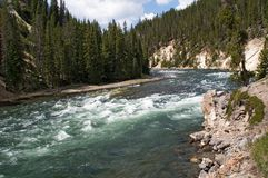 Yellowstone river and rapids Royalty Free Stock Photo