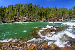 Yellowstone River Rapids Royalty Free Stock Photography