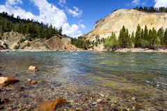 Yellowstone River running through Canyon during summer day Stock Image