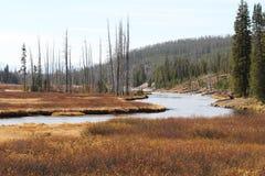 Yellowstone River Stock Photo