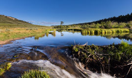 Yellowstone River in Utah Royalty Free Stock Photography