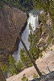 Yellowstone river waterfall. Abyss, rocks, steep cliffs and forest Royalty Free Stock Images