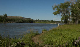 Yellowstone rzeka od Norm& x27; s wyspa Obrazy Stock