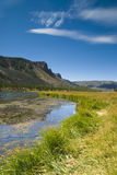 Yellowstone S Madison Royalty Free Stock Images