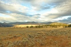 Yellowstone a settembre Fotografia Stock