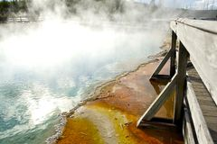 Yellowstone Steaming Pool Stock Image