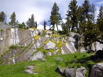 Yellowstone-Steingarten Stockfoto