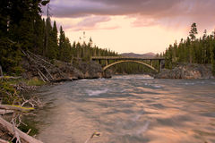 Yellowstone sunrise by a river Royalty Free Stock Images