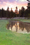 Yellowstone sunrise by a river Stock Images