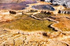 Yellowstone termiskt särdragslut upp Fotografering för Bildbyråer