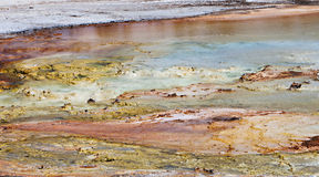Yellowstone Thermal River Royalty Free Stock Photography