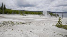 Yellowstone Thumb Geyser Basin stock video