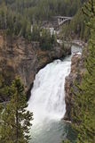 Yellowstone Uppernedgångar Arkivbilder
