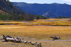 Yellowstone valley. River winding through valley in Yellowstone Royalty Free Stock Photography